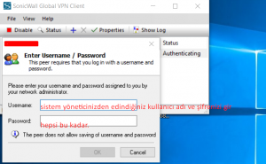 sonicwall global vpn client kurulumu 5